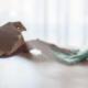 Coronavirus: prodotti per pulire la casa