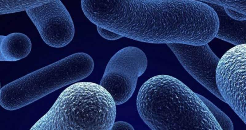 Differenza tra pulizia, sanificazione e disinfezione